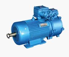 YBZP系列起重用隔爆型变频调速三相异步电动机