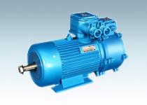 YBZE、YBZSE系列起重用隔爆型电磁制动三相异步电动机