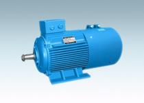 YZPE系列起重及冶金用变频调速三相异步电动机