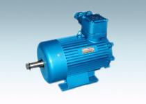 YBZ、YBZS系列起重用隔爆型三相异步电动机