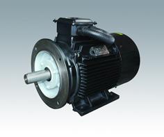 TYCP系列稀土永磁变频调速电动机